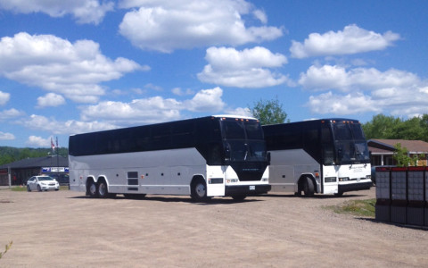 New Coach Arrived